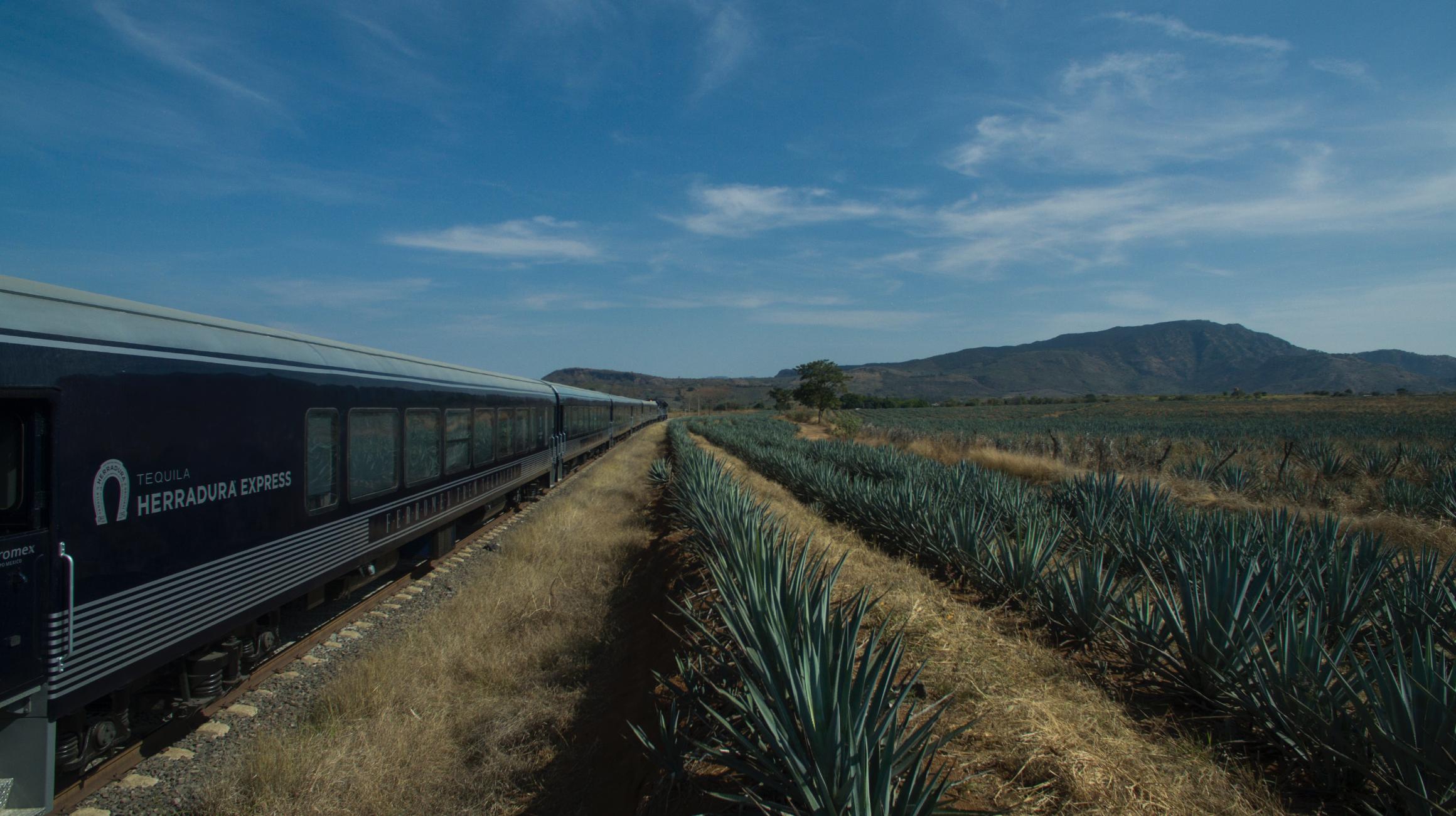 Guadalajara Tequila Mexico
